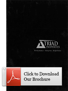 Triad brochure icon